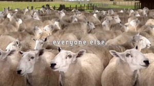 Samsung subtly calls Apple fans 'sheep'